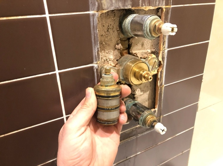 shower cartridge replacement